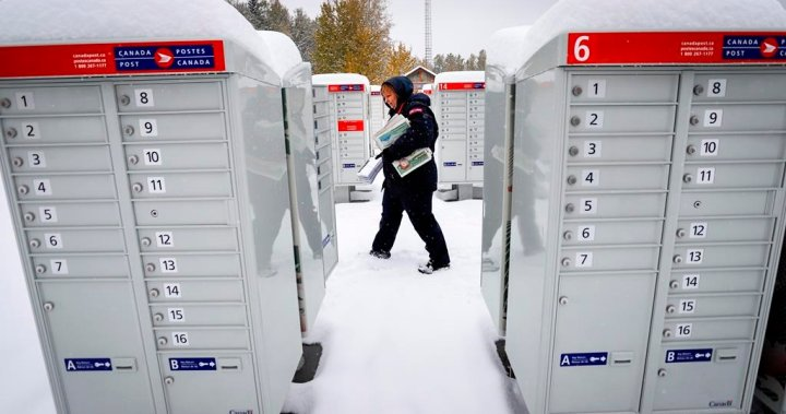 Canada Post contratará a más de 4.000 nuevos trabajadores para satisfacer las demandas de las festividades – national